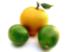 LemonProfit12