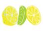 LemonProfit22